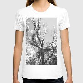 leafless tree T-shirt