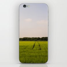 Corn 2 iPhone Skin