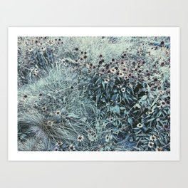 Silver Flowers Art Print