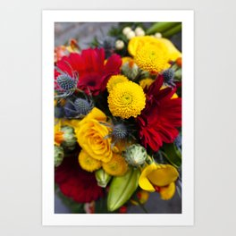 Floral IV  /  The Fresh Flower Collection Art Print