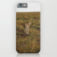 Cheetah Trail iPhone 6s Slim Case