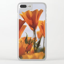 Golden Poppies In The Breeze Clear iPhone Case