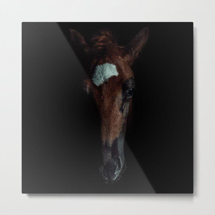 Horse In The Dark Metal Print