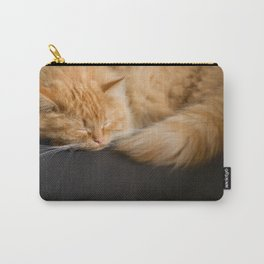 Fluffy Ginger Cat On Black Carry-All Pouch