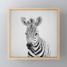 Baby Zebra - Black & White Framed Mini Art Print