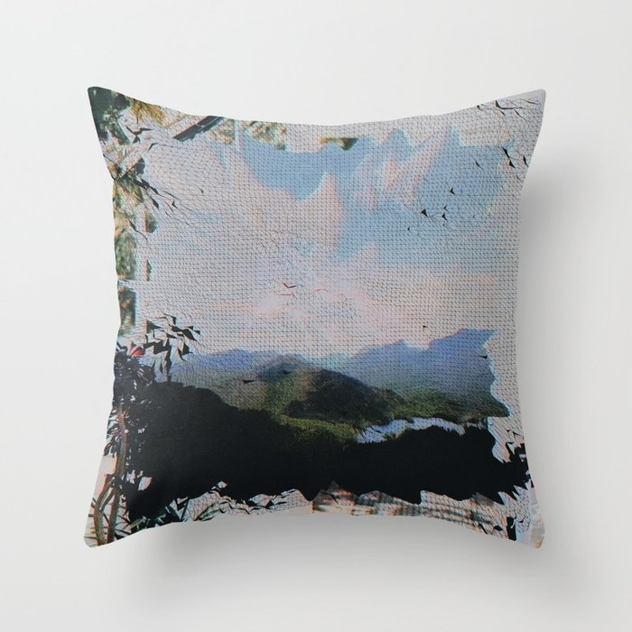 WNDW99 Throw Pillow