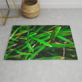 closeup green leaves texture background Rug