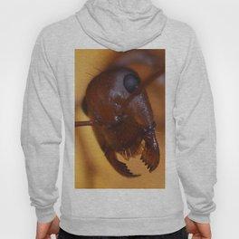 Giant Ant Hoody