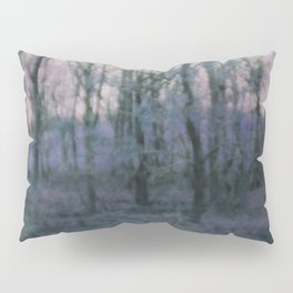 Unknown Land Pillow Sham