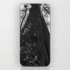 Foundation No. 2 iPhone & iPod Skin