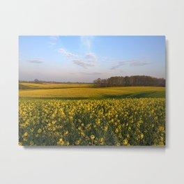Blooming in yellow 4 Metal Print