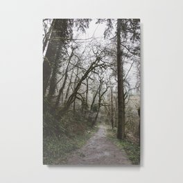 Frosty Forest Path Metal Print