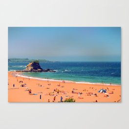 Summer in the North of Spain Canvas Print