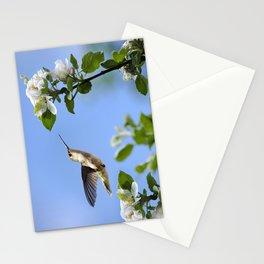 Spring Hummingbird Stationery Cards