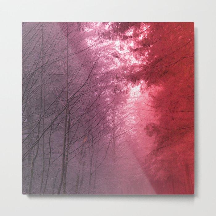 Rose Snowstorm Metal Print