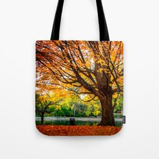 Many colors of fall Tote Bag