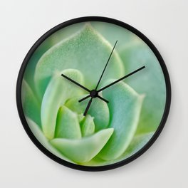 Sempervivum close-up shot Wall Clock