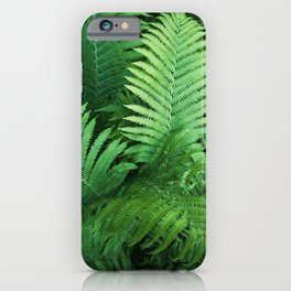 Fern Photography | Tropical Leaves | Nature | Jungle | Rainforest | Tropical | Minimalism iPhone Case