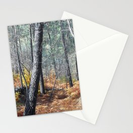 Fall Forest with Ferns Stationery Cards