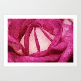 Pink Rose painted version Art Print