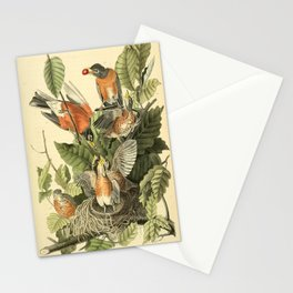American robin Stationery Cards