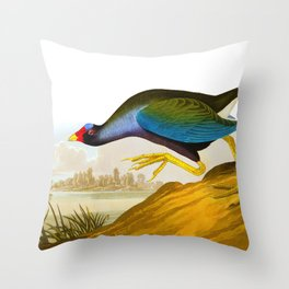 Purple Gallinule Bird Throw Pillow