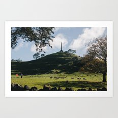 One Tree Hill in Auckland Art Print