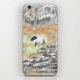 Sheep by the Wall iPhone Skin