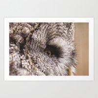 Owl be keeping an eye on you! Art Print