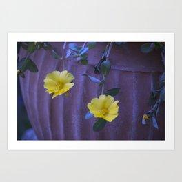 Longwood Gardens - Spring Series 155 Art Print