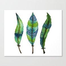 Mystic Sea Feather Trio Canvas Print