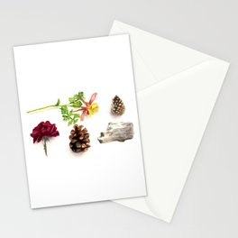 Flowers, Pinecones, and Driftwood Flatlay Stationery Cards