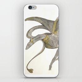 Grey Lady iPhone Skin
