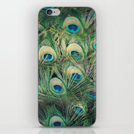 Loads of feathers iPhone Skin