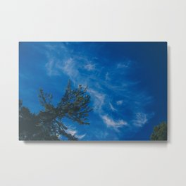 The eagle and the blue sky Metal Print