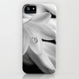 Black and White Hosta Bloom iPhone Case