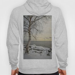 Curves of the Silver Birch by Teresa Thompson Hoody