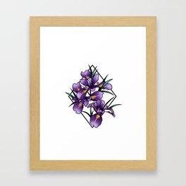 Oregon iris Framed Art Print