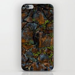 Mother of Thousands iPhone Skin