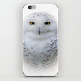 Dreamy Encounter with a Serene Snowy Owl iPhone Skin