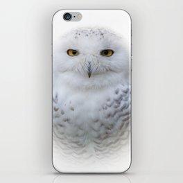 Dreamy Encounter with a Serene Snowy Owl iPhone Skin