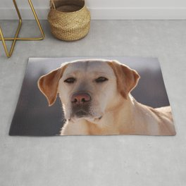 Portrait of A Golden Labrador Retriever Rug