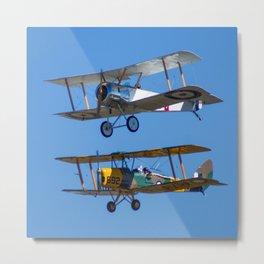 Tiger Moths Metal Print