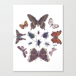 Mosaic of Bugs Canvas Print