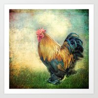 The coloured rooster Art Print