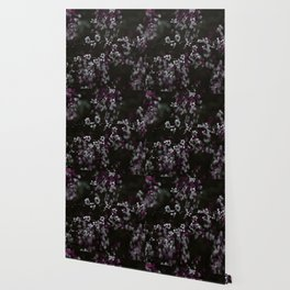 Dark Purple Leaves and White Cherry Blossoms on Black Wallpaper