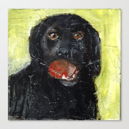 Dog with Red Ball Canvas Print