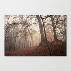 Autumn Fantasy : Mist and Mistery Canvas Print