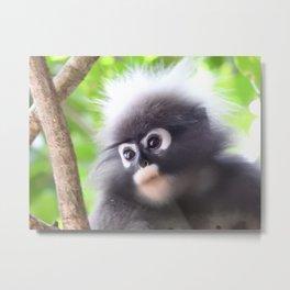 Monkey island Metal Print