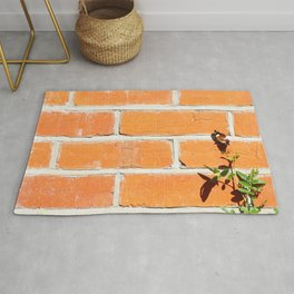 The poetry of ordinary things Rug